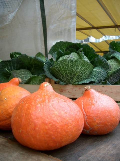 cabbages and squash